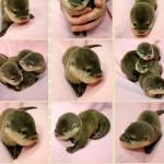 baby_ottersU01