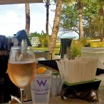 The W Retreat & Spa - Vieques